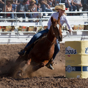 Tucson Rodeo 90th Anniversary by Jeffrey Hechter - Sports & Fitness Rodeo/Bull Riding