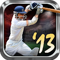Tap Cricket 2013