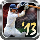Tap Cricket 2013 icon