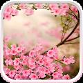 Spring Flowers Live Wallpaper download