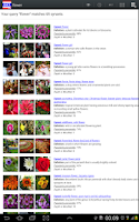 Screenshot of Thai Dict