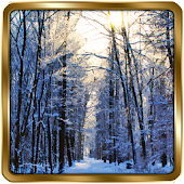 Winter Wallpaper GOLD
