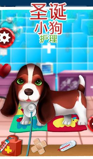 圣诞小狗护理