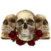 Three Skulls sticker widget