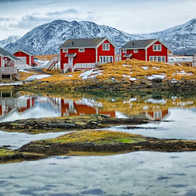 Red Houses in Sommarøy by CK Lam - Landscapes Mountains & Hills ( mountains, reflection, tromso, sommarøy, arctic, arctic circle, city, norway )