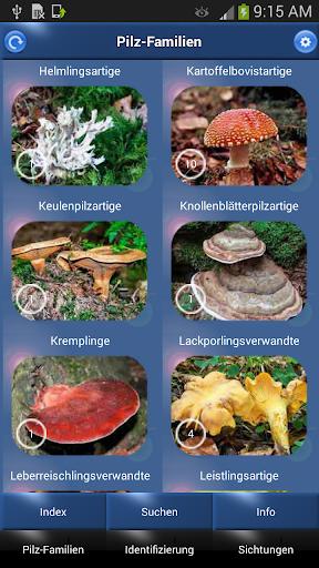 Pilz Id Die Pilze Sammeln App