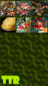 Koi Sliding Puzzle