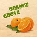 Orange Grove Test icon