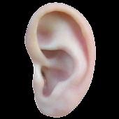 AcuMap EAR