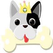 개가 왕이다