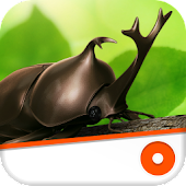 Dynastid Beetle for Phone