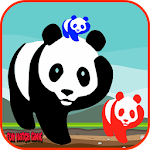 Panda Bear Games Free for Kids