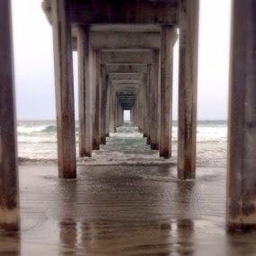 La Jolla  by Lisa Ehrlich - Buildings & Architecture Bridges & Suspended Structures (  )