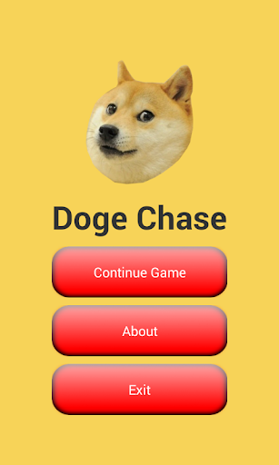 Doge Chase