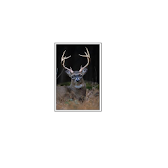 Hunters Wind Direction App APK Icon