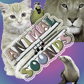 Kids games : Animal Sounds