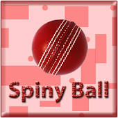 Spiny Ball : The arcade game