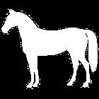 Ravimittari Pro icon