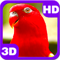 Wonderful Red Parrots Chatter