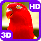 Wonderful Red Parrot Chatter icon