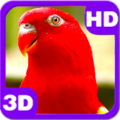 Wonderful Red Parrot Chatter