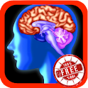 Pruebas de Brain Age icon
