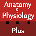 Anatomy & Physiology Cards logo