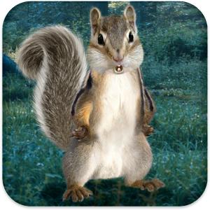 Real Talking Squirrel Icon