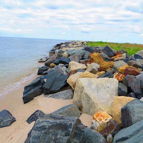 Solitary Crab Pot by Tanya Washburn - Uncategorized All Uncategorized ( boulders, chesapeake, bay, sea wall, crab pot )