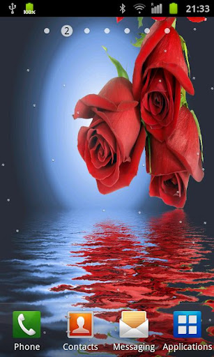 Rose In Water II
