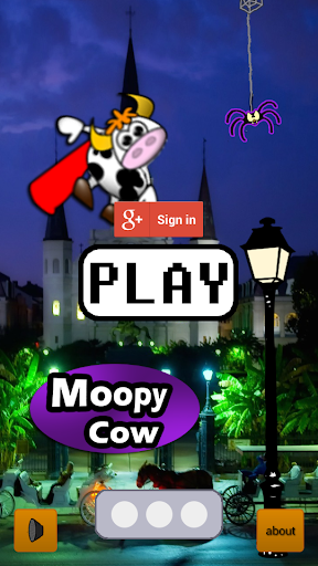Moopy Cow