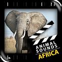Best African Animals Sound icon