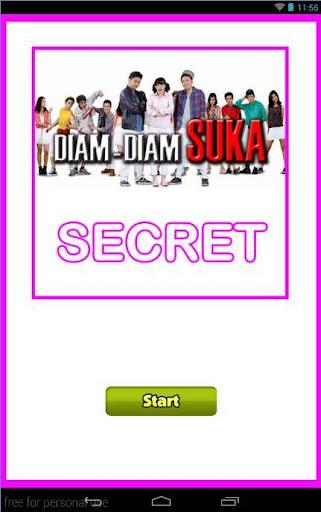 Diam Diam Suka Secret