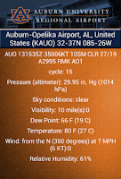 Screenshot of Auburn University Reg. Airport