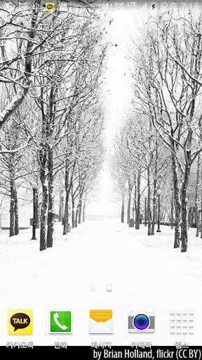 새하얀겨울숲배경