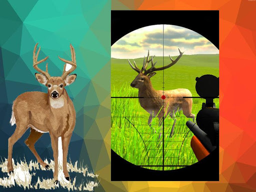animal shooting games
