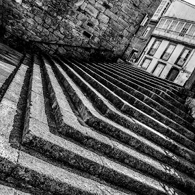 Santiago Steps by Justin Murazzo - Buildings & Architecture Other Exteriors ( railing, old, europe, moss, stone, apartment, door, beauty, travel, house, rustic, spain, city, contrast, stairs, village, lifestyle, manmade, light, black, abstract, galicia, building, vertical lines, spanish, beautiful, white, tourism, scenic, gray, angle, tiled, urban, pwc, window, near, cathedral, santiago, day, historical, town, scenery, santiago de compostela, outside,  )