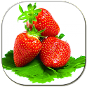 Strawberries Lwp logo