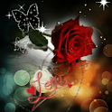 Love Red Rose Live Wallpaper