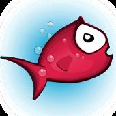Kiki Fish
