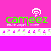 Cameez FroYo and Coffee