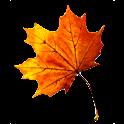 3D Autumn Live Wallpaper icon