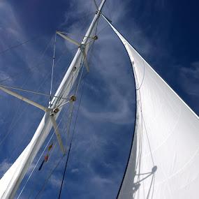 sails by Lejla Hadziabdic - Instagram & Mobile Other ( #sail #sky #blue #barcelona #sea #joy )