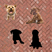 Toddlers puzzles : Puppies