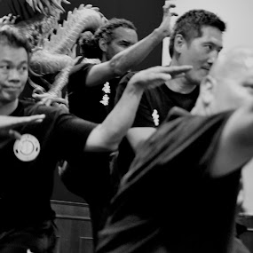 Hong Luck Kung fu by David Chu - People Portraits of Men ( @chinatwonbia @go4david @chu @toronto @2013 @2014 @cbc,  )