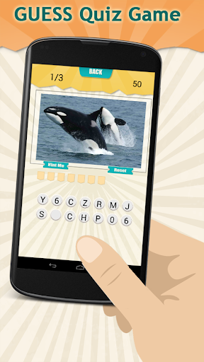 Marine Mammals Quiz Game