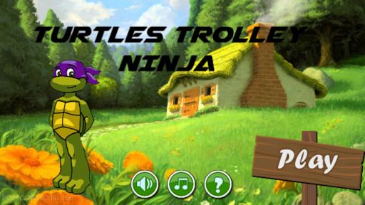 Turtles ninja trolley