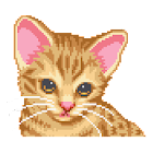 Ocicat Virtual Pet icon