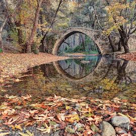 Kelefos Bridge by John Kotsovos - Buildings & Architecture Bridges & Suspended Structures ( reflection, autumn, trees, forest, bridge, leaves, cyprus, river, venetian )