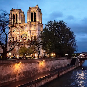 Notre Dame by Steve Hall - City,  Street & Park  Historic Districts ( paris, france )